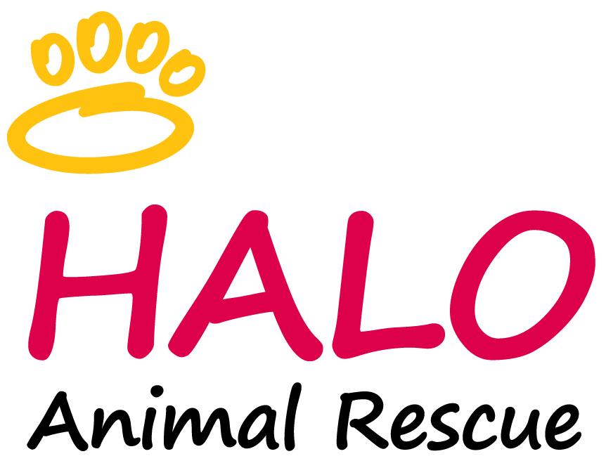 HALO Animal Rescue