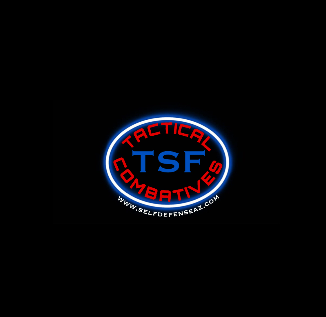 Total Submission Fighting Systems' Logo